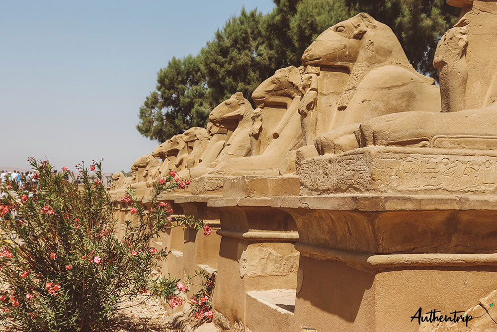temple karnak sphinx