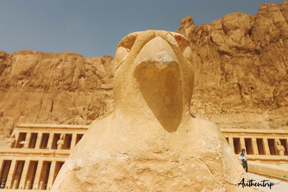 temple hatchepsut faucon