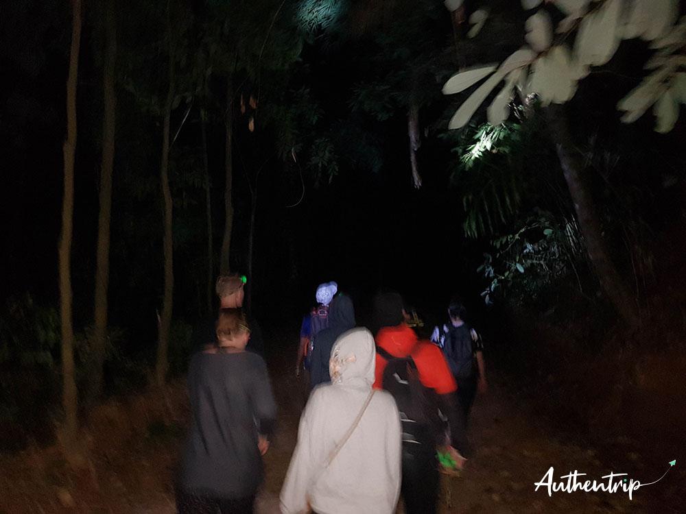trek jungle khao sok
