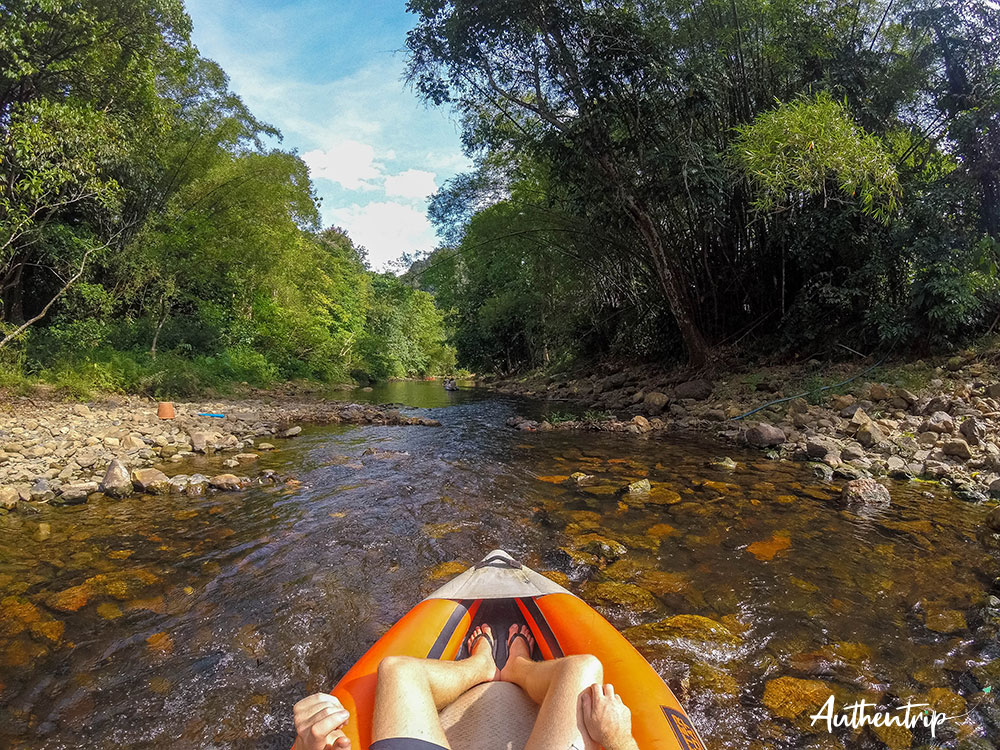 riviere jungle canoe khao sok