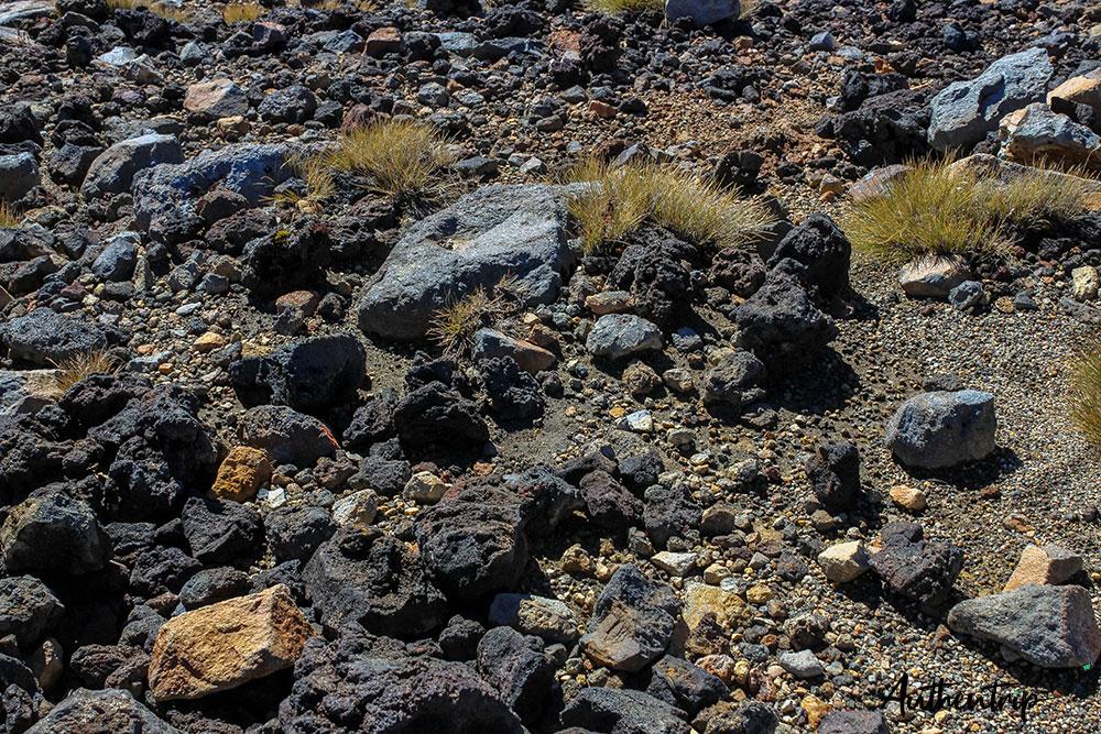 pierres volcaniques tongariro