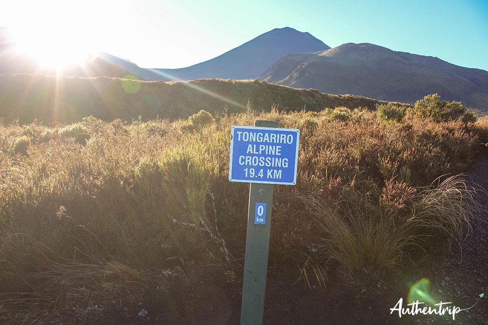 tongariro alpine crossing départ