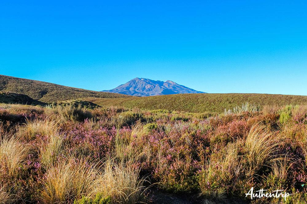 tongariro alpine crossing paysage