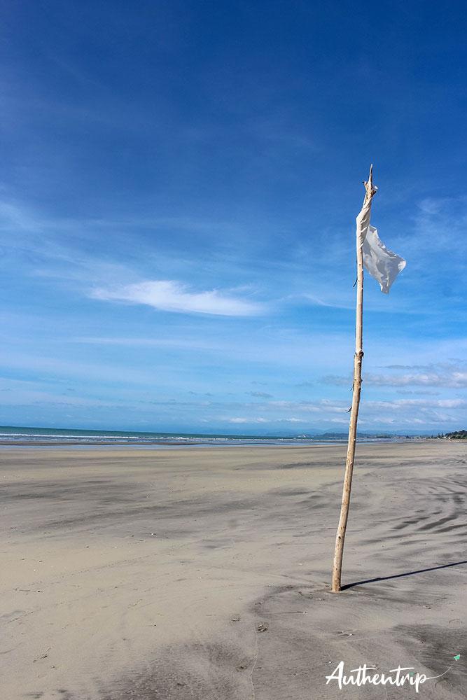 plage drapeau bay of plenty