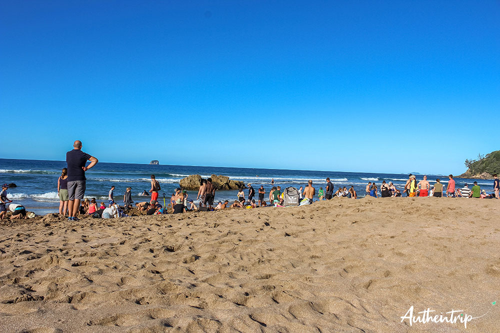 foule hot water beach