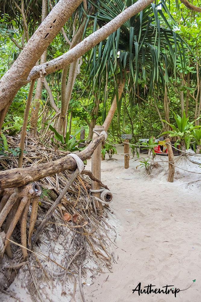 jungle maya bay