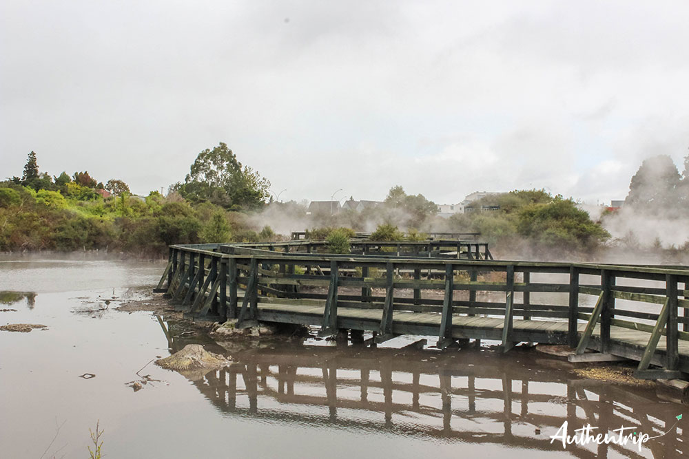 hot lake whakarewarewa