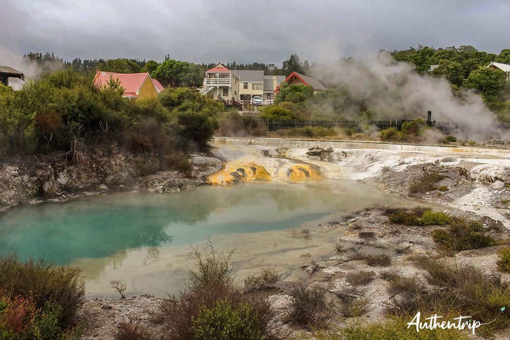 Source thermale - Whakarewarewa