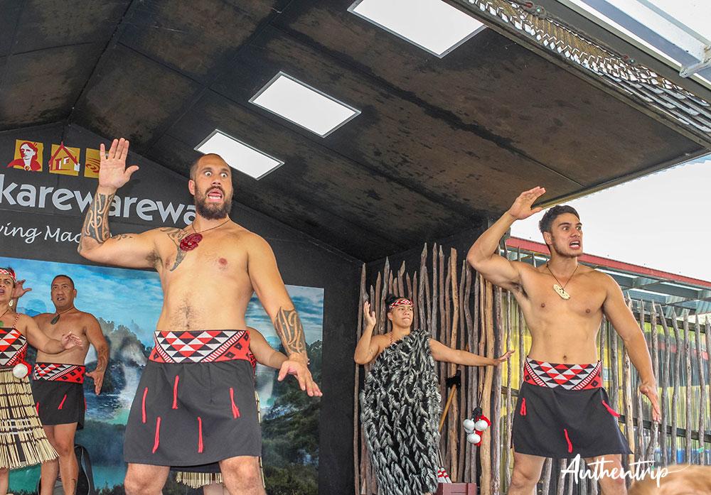 haka spectacle whakarewarewa