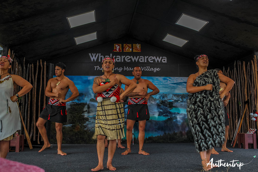 spectacle whakarewarewa