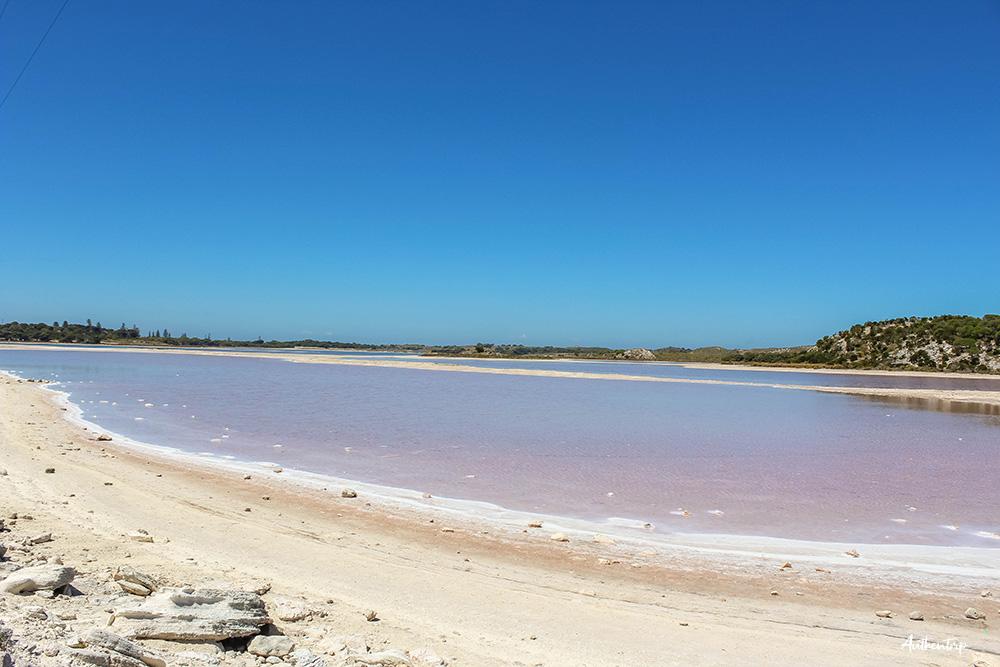 rottnest island lac salé