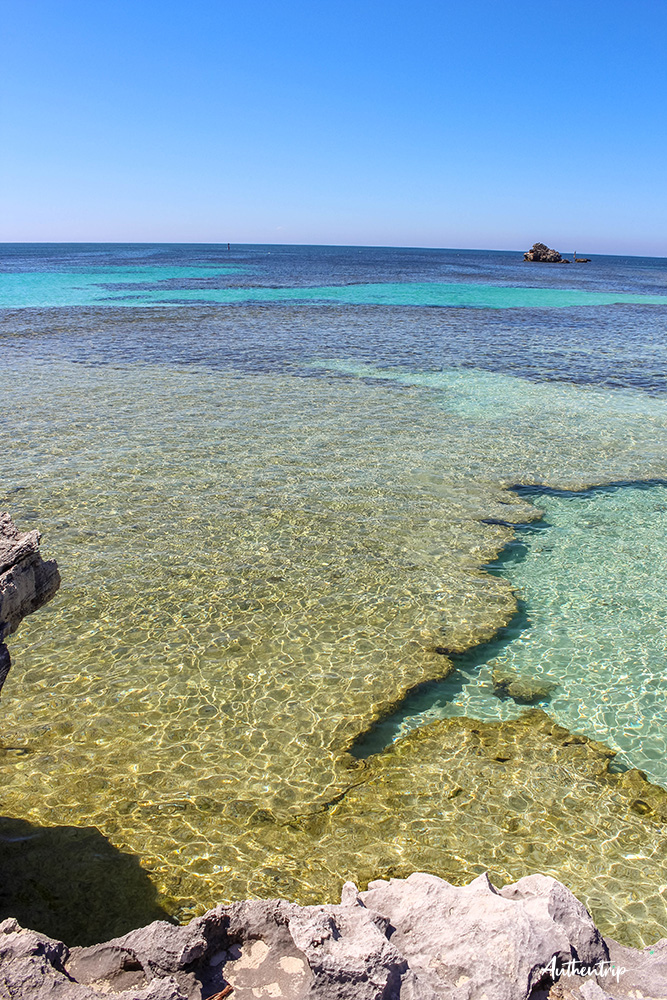 rottnest island the basin
