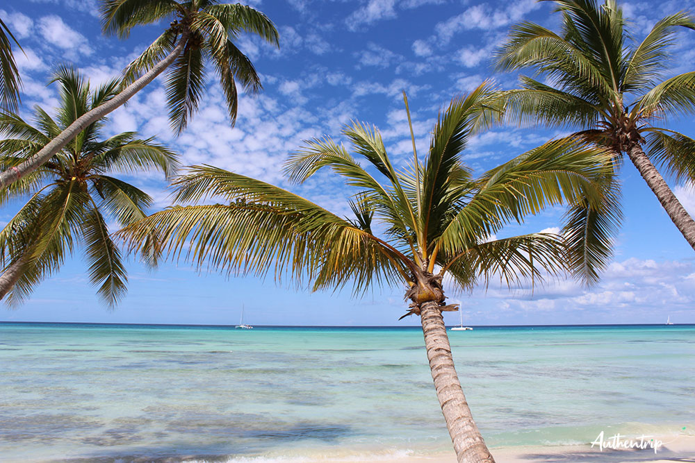 Isla Saona république dominicaine