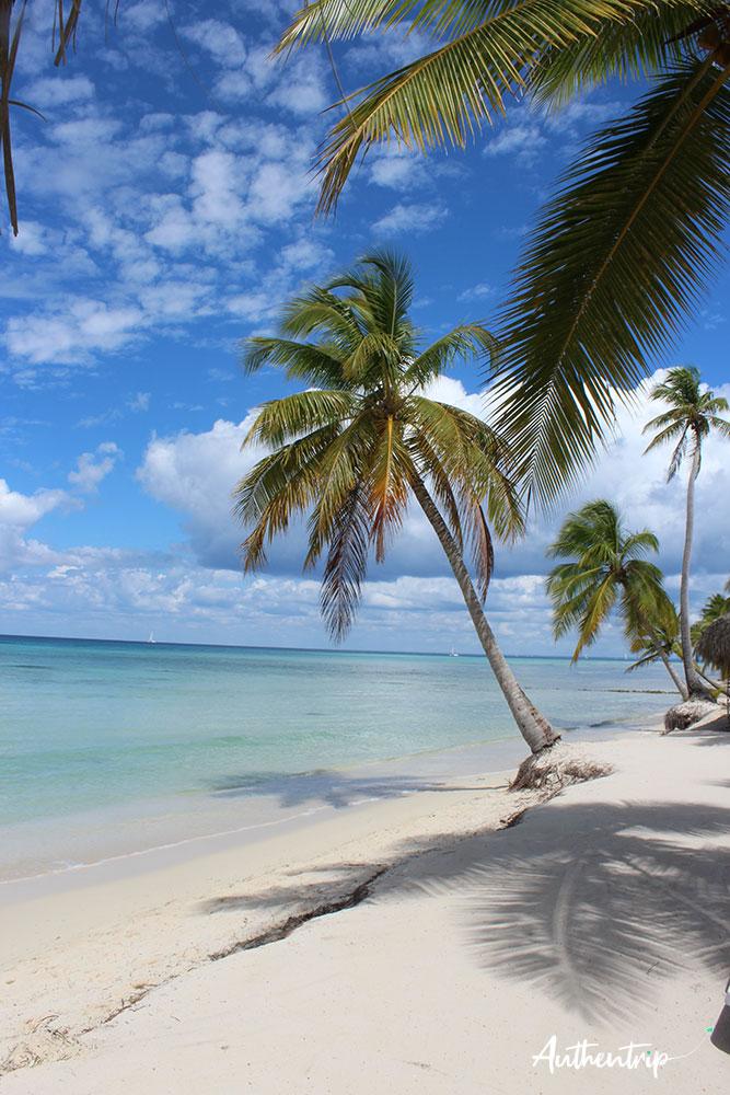 plage Isla Saona république dominicaine