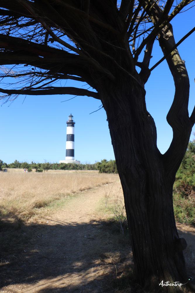 île d'Oléron phare Chassiron