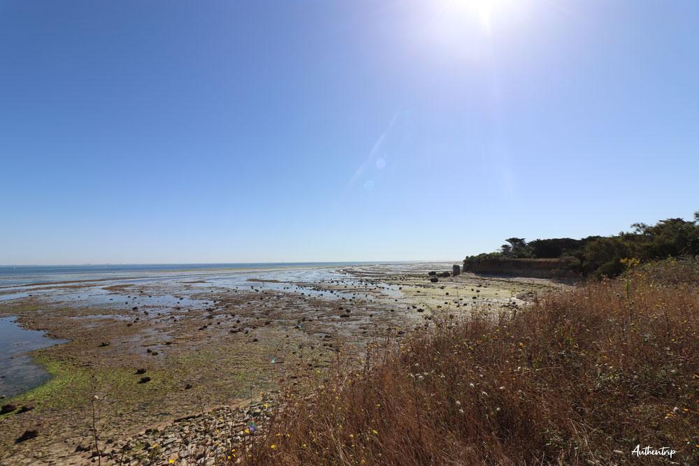 île d'Oléron mer