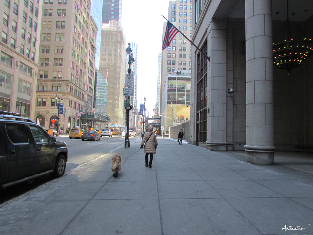 Fifth avenue new york