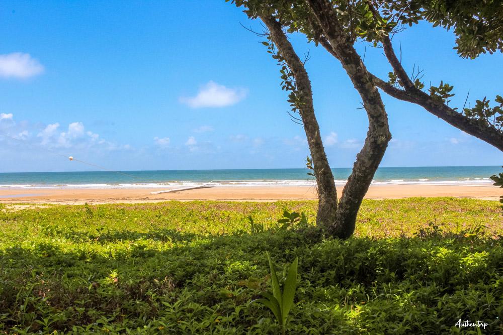 mission beach Queensland
